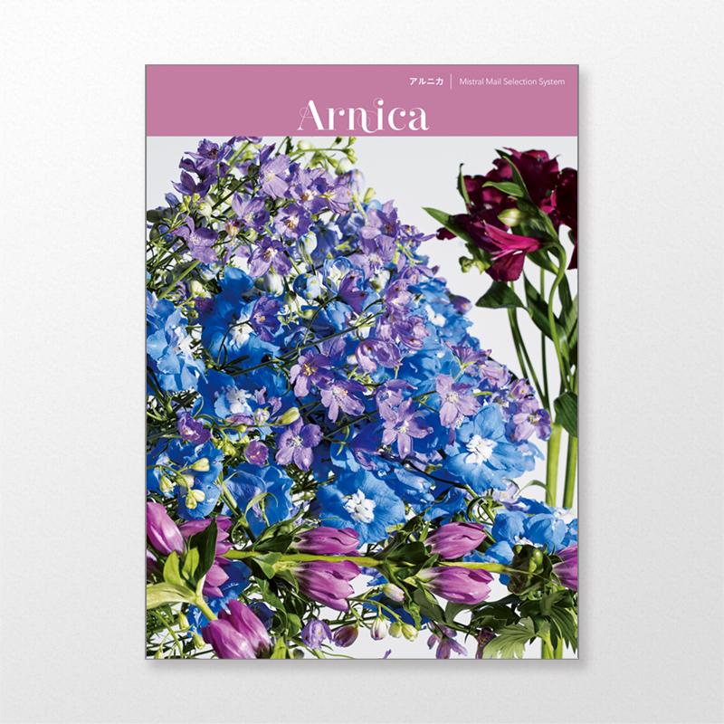 結婚内祝い カタログギフト/ミストラル/アルニカ 20