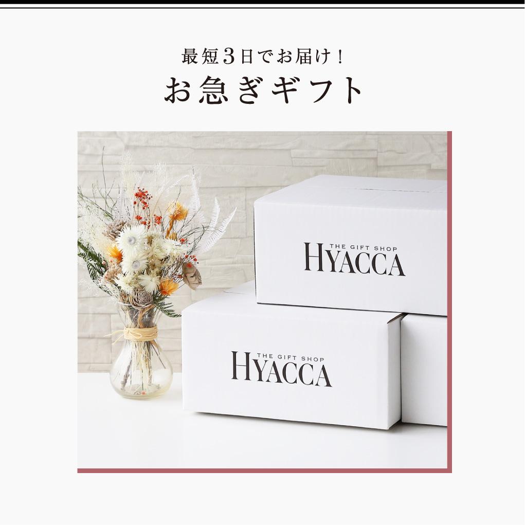 Especially Box/Sun/サン/レッド 19